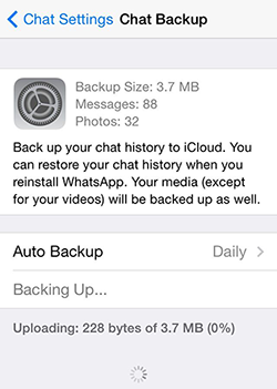 Back up WhatsApp Message to iCloud