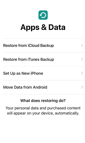 restore in set up screen